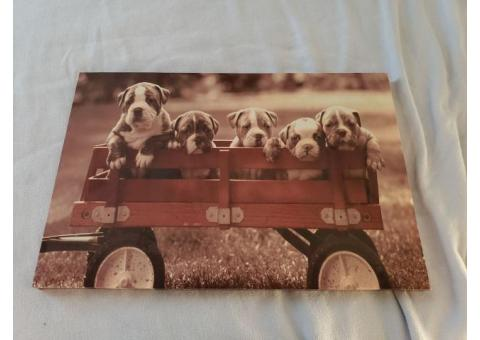 Puppy Wagon Photo